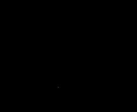 Manta Ray Model MR-SR